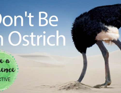 Don't be an Ostrich