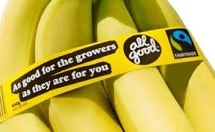 Bananas Fairtrade Ethical